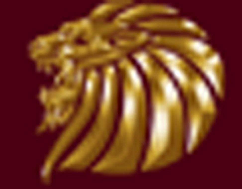 viro-group-logo